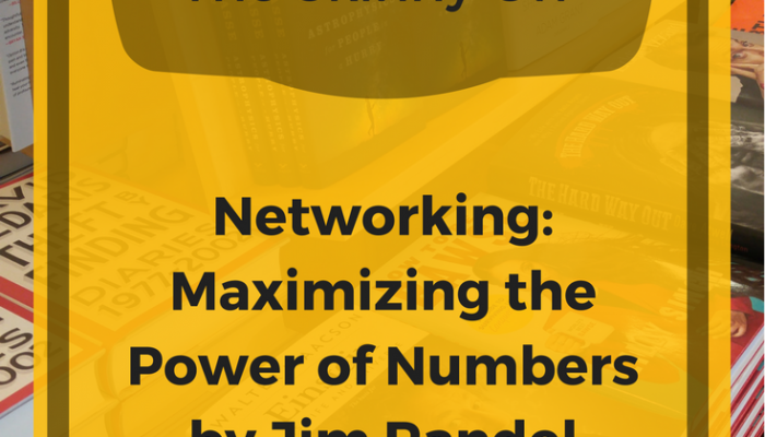 Review of The Skinny On Networking: Maximizing the Power of Numbers by Jim Randel