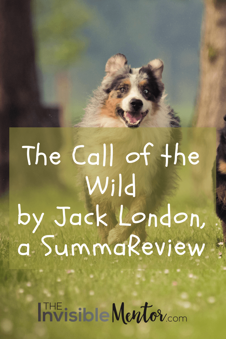 the call of the wild, the call of the wild jack landon