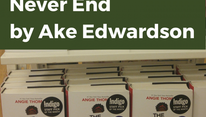 Never End by Ake Edwardson, Book Review