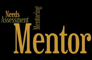 Mentoring Needs Assessment